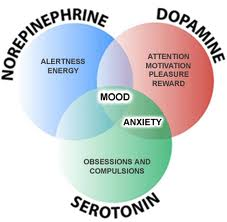 Neurotransmitters-Venn-Diagram-2