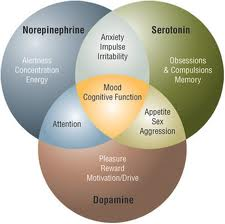 Neurotransmitters-Venn-Diagram