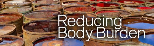 reducing body burden