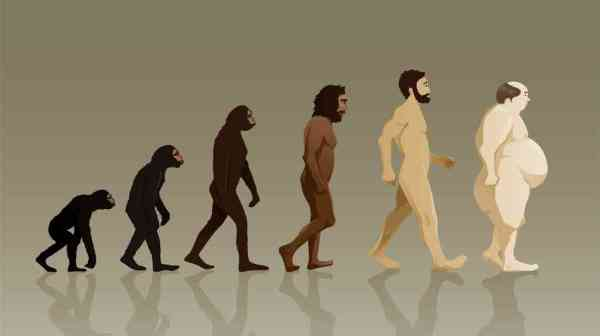 Paleolithic Diets & Evolutionary Medicine