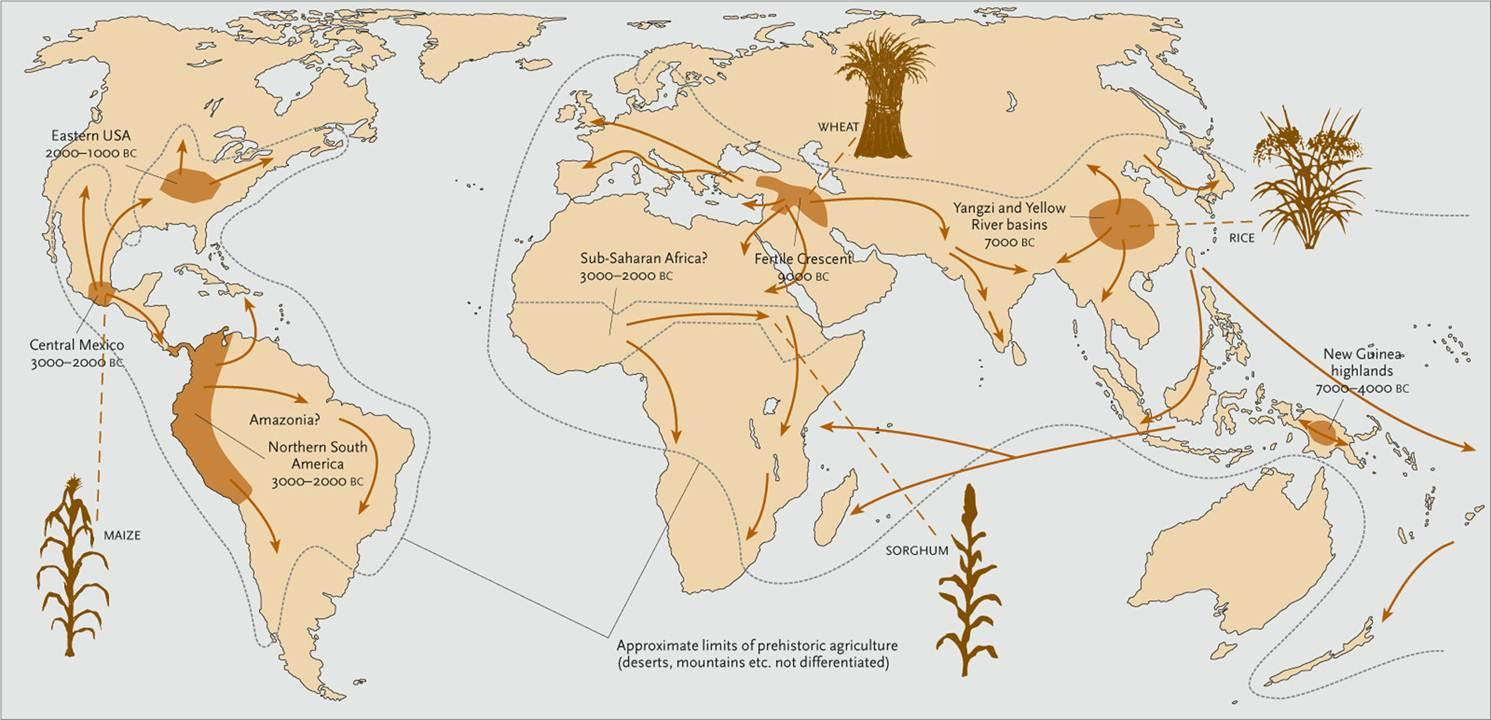 origins_and_spread_of_agriculture