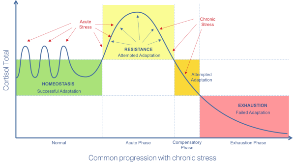4-Sage Adrenal Stress Picture