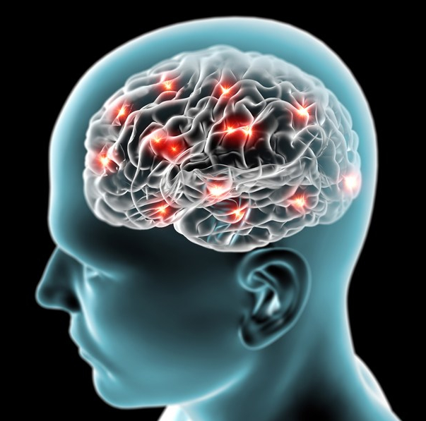How to Grow And Protect Your BrainFunction