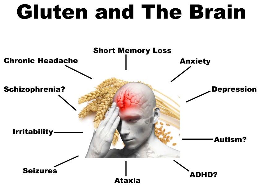 Gluten & The Brain